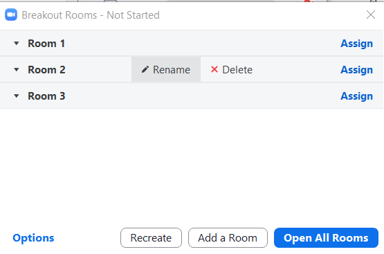 Screenshot Zoom breakout rooms window before rooms are opened