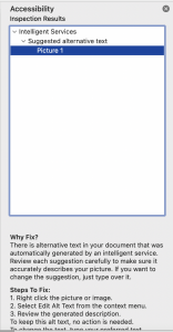Screenshot of the Accessibility Checker dialogue box