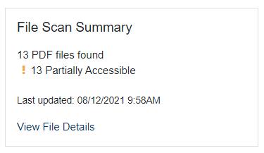 Screen shot of FileScan summary block